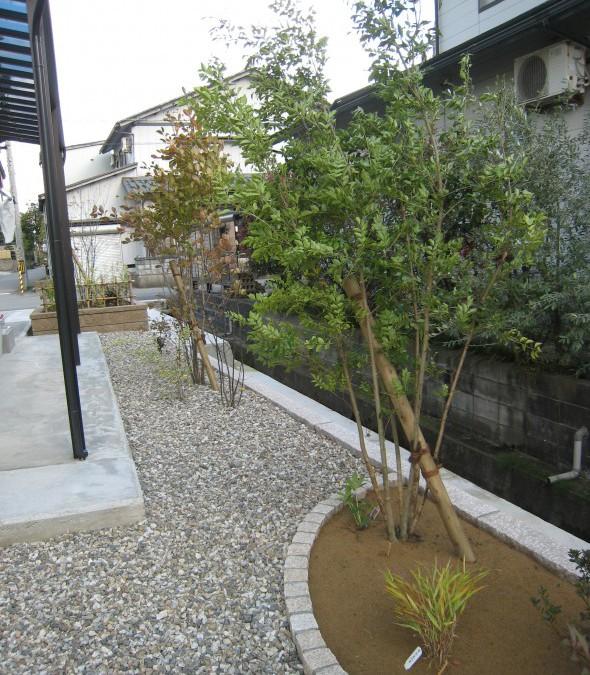 樹木でやさしい目隠しをするお庭/福井市N様邸