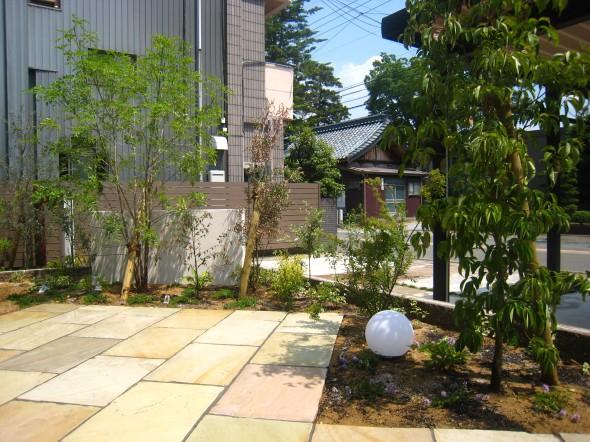 常緑樹とカラーリーフのフロントガーデン/あわら市M様邸