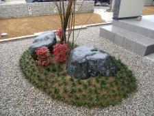 景石とタマリュウの築山/福井市N様邸