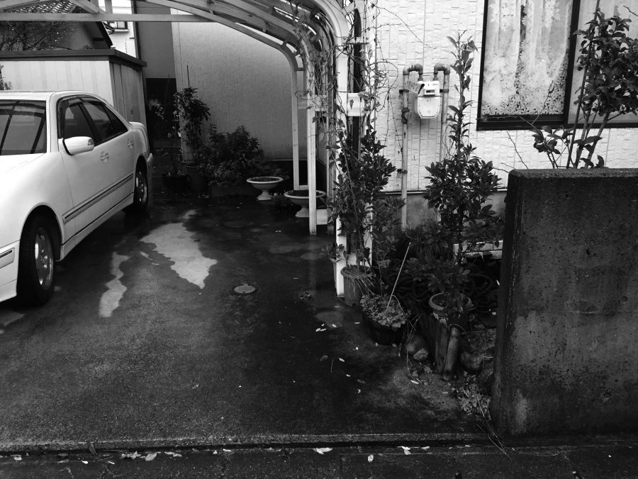 バラを愛でる庭 福井市S様邸