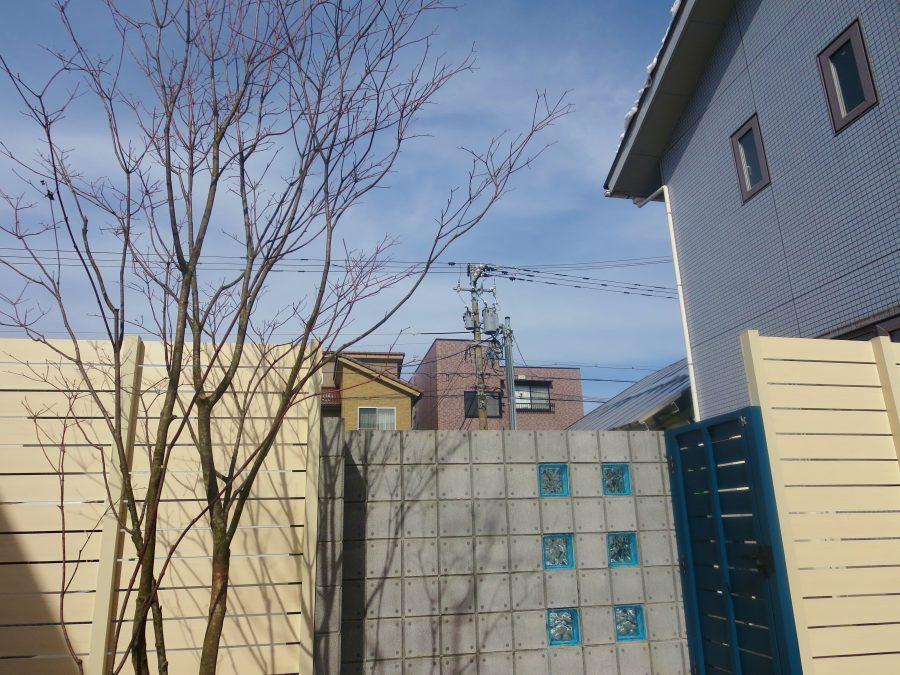 メープルホワイトとブルーで囲われたドッグランガーデン 福井市G様邸